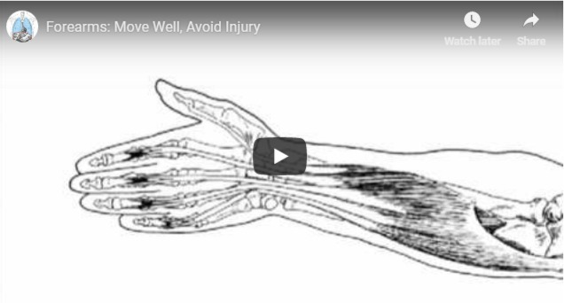 A video thumnail of muscle and bone structure od human arm